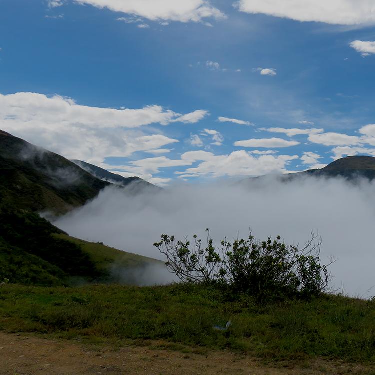 Fog creeping up valley along road to Jaén, Peru. Adair, 2015.